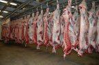 گوشت در فروشگاههای کشتارگاه تبریز به قیمت مناست عرضه میشود