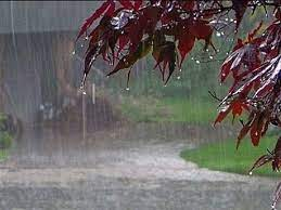 بارش باران و احتمال بارش برف در برخی مناطق کشور